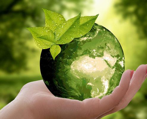 acciones-ecologicas